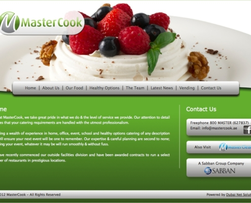 MasterCook 495x400 - Dubai Web Design